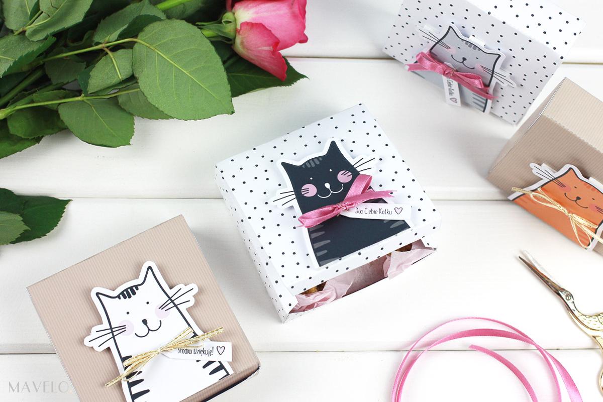 pudełka z kotkami