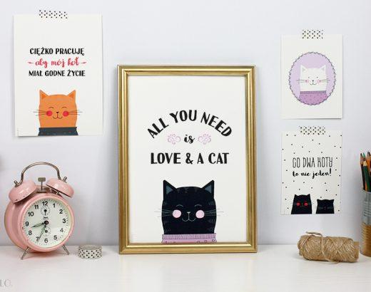 Plakaty z kotami do druku (+wyzwanie dla kociarzy!)