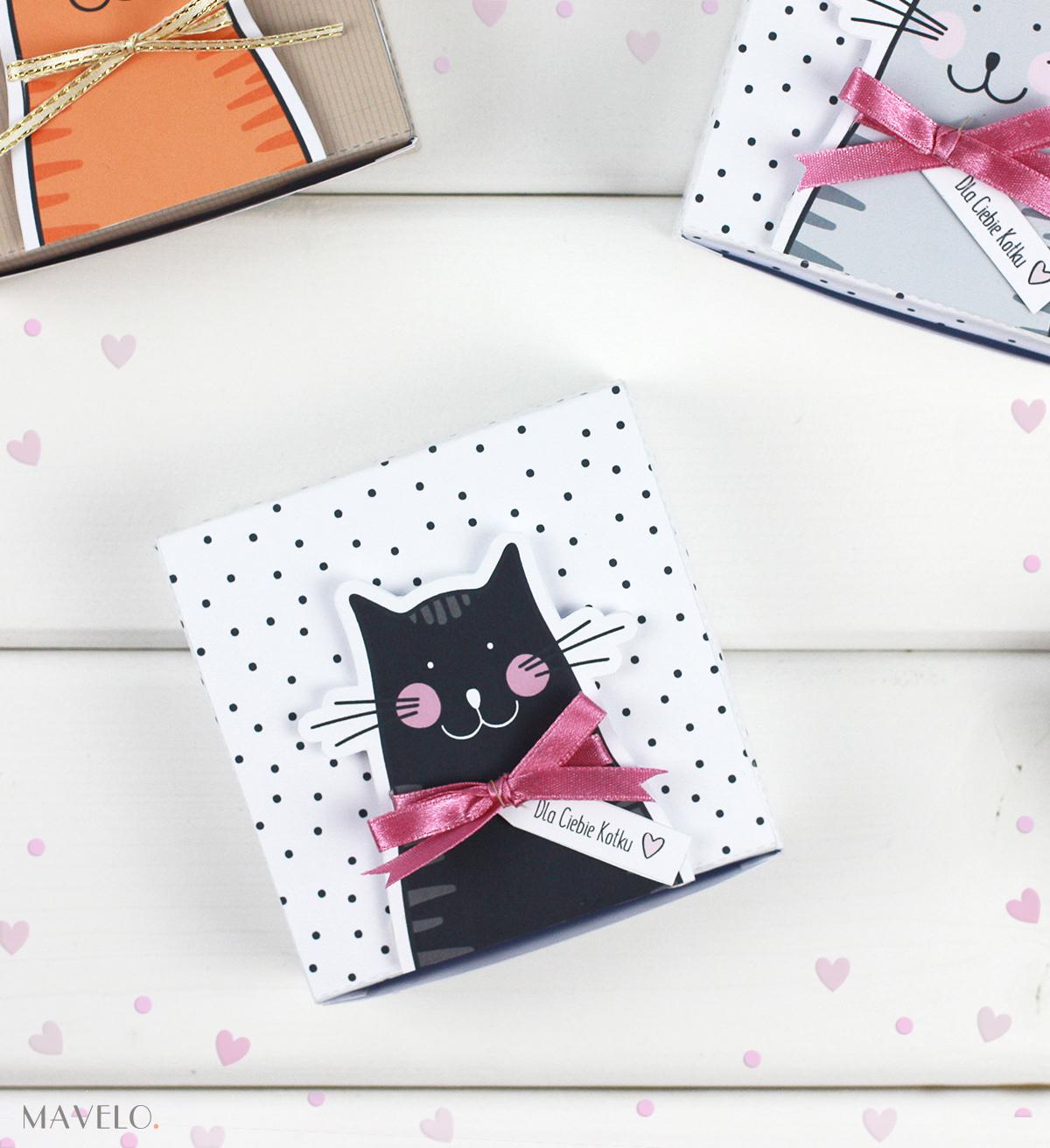 pudełka z kotami