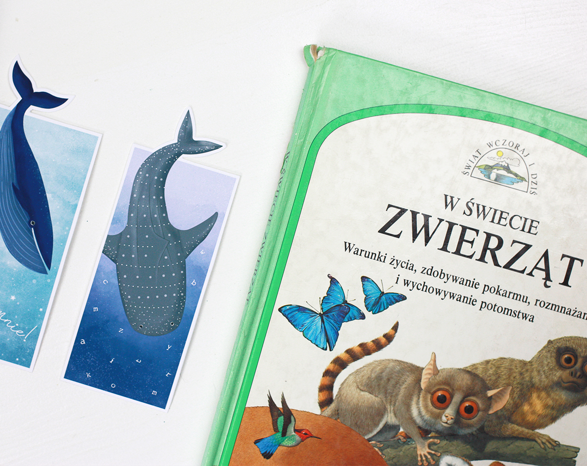 Morskie kreatury - ogoniaste zakładki do książek