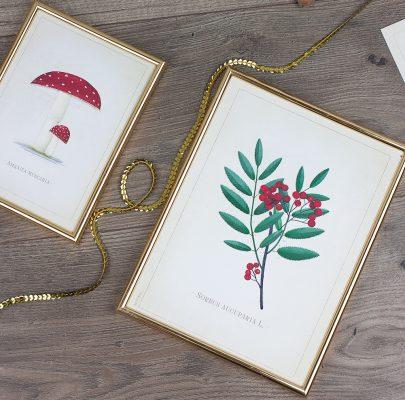 Botaniczne retro plakaty do druku (+ wersja na białym tle) / edycja jesienna